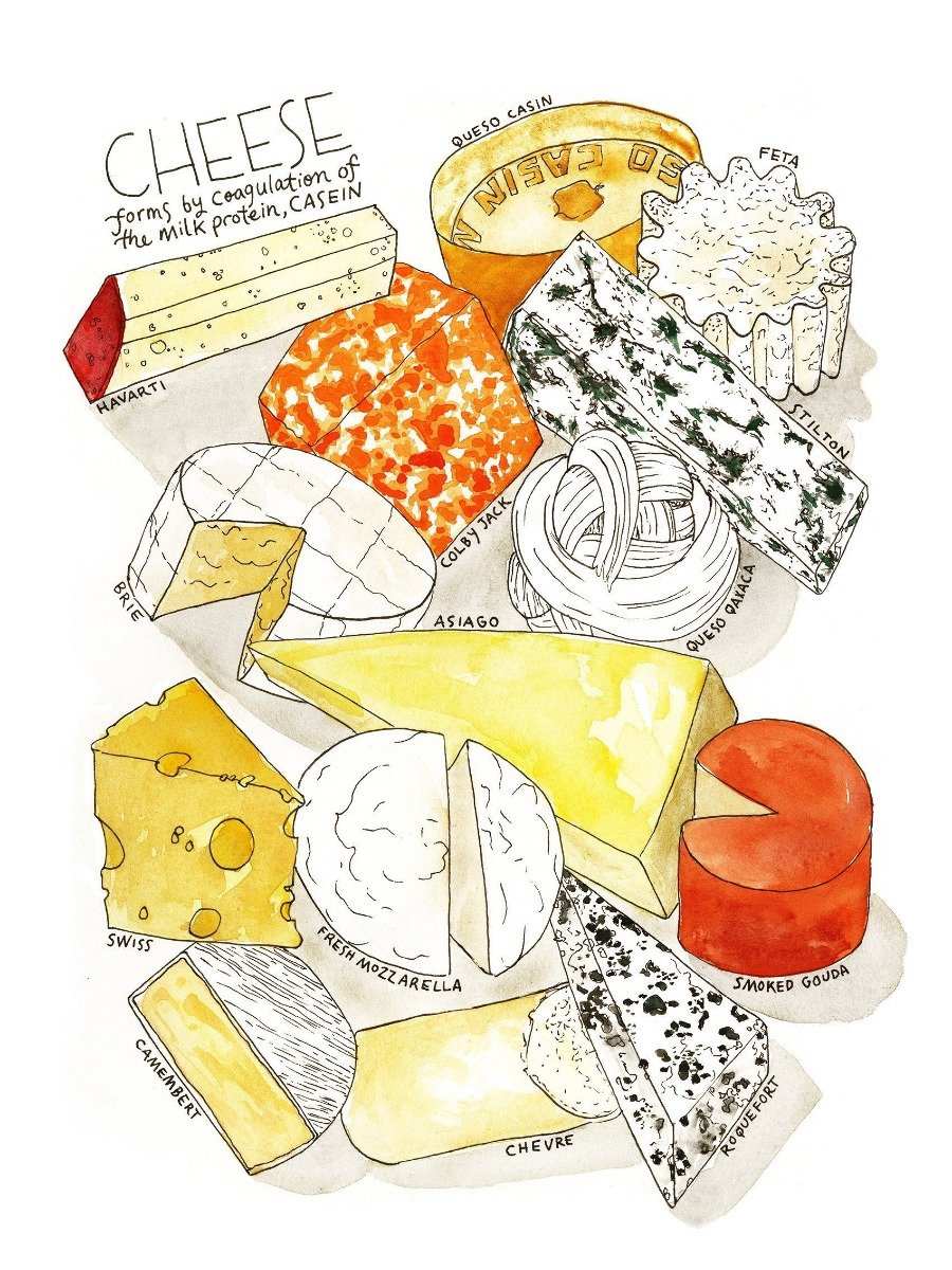 Marcella Kriebel 'Cheese Plate' Watercolor Print